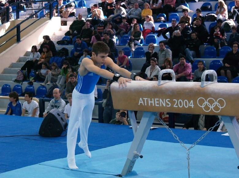 07-enorgani-panellinio2008