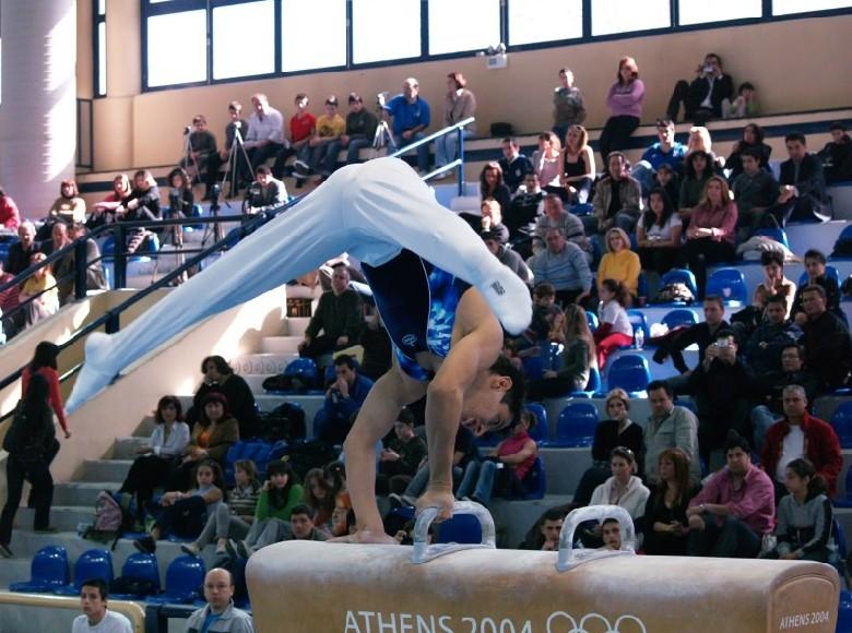 08-enorgani-panellinio2008