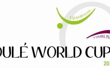 trampoline-loule-world-cup-logo-2015