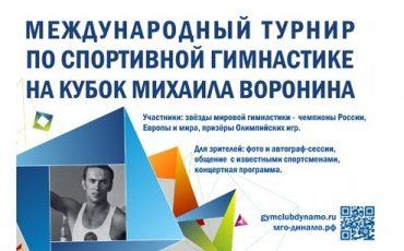 poster_2013_voronin_cup