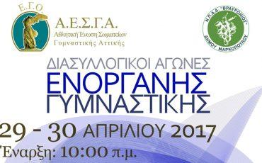 aesga-diasyllogikoi-enorganis-2017_afisa1
