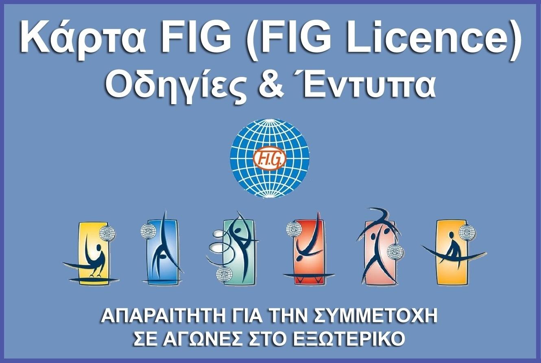 fig-licence-banner