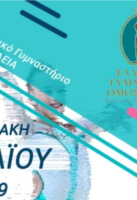 diasyllogikos-aerovikis-livadeia-2019_720